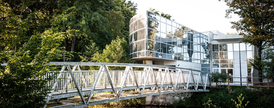 Photo Pont des Arts - Crédit Nico M