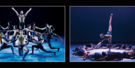 Deux grandes compagnies de danse   Jeudis 17 Janvier et 7 Février