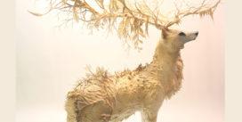 Soleil Blanc : une fable théâtrale sur notre relation à la Nature